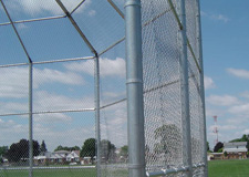 backstop chain link